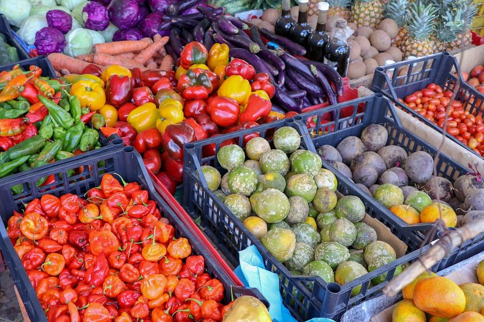 蔬菜的圖片-安可人生