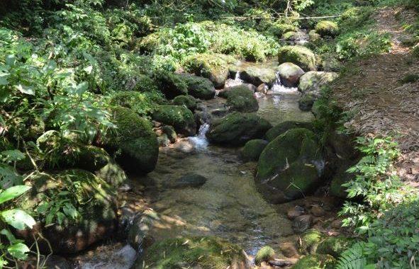即刻啟程秋日小旅行 新北3條郊山古道瀑布秘境