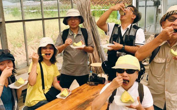 來去日本鄉間住一晚 這堂課教你如何當玩家!