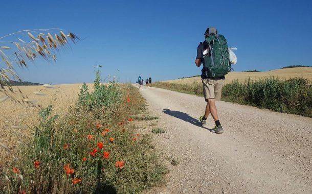 走在旅行路上 看見傳承千年的美好傳統