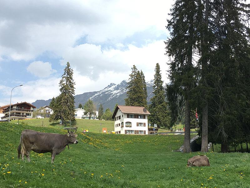 退休移居不需要砸大筆老本 我們參考瑞士