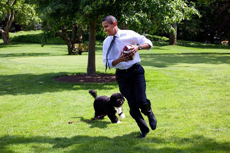 退休滿一年了!歐巴馬用社群媒體推廣精彩人生「第二幕」