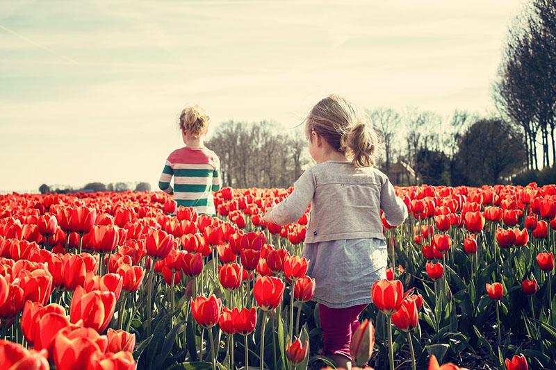 大膽放手逍遙去 荷蘭爺奶大聲說:自己生的孩子自己帶!