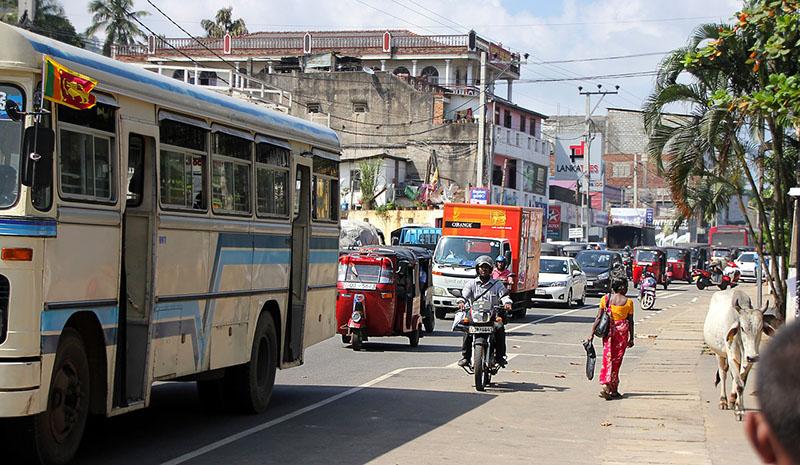 旅行,隨心所欲 斯里蘭卡11日自助遊可以這樣玩!