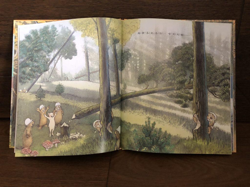 後青春繪本館 - 我在森林有個家 - 安可人生