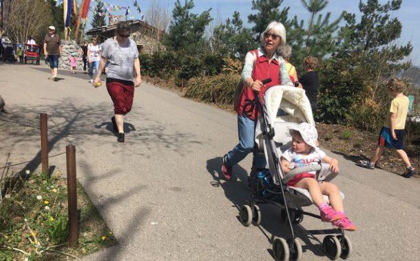家人是一生的眷戀 II : 曼蒂奶奶的甜蜜任務
