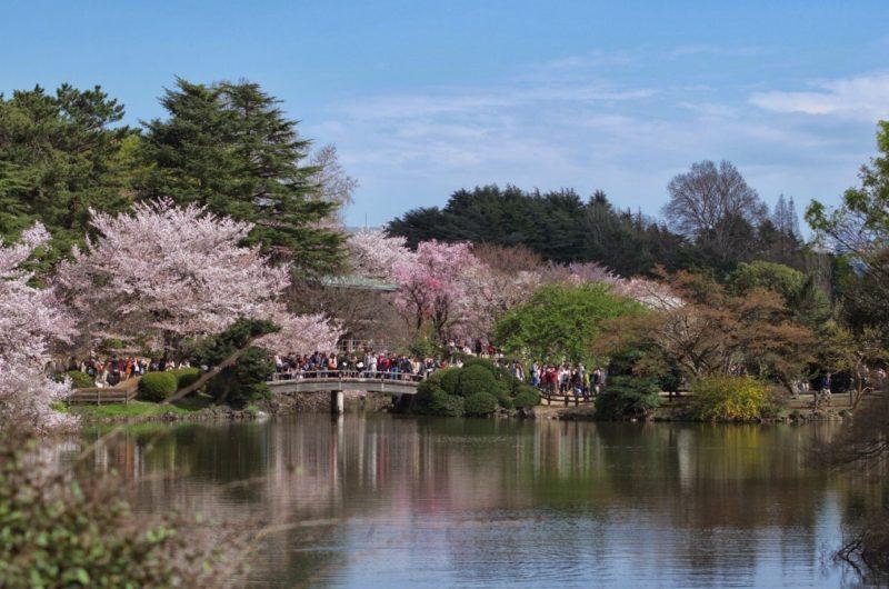 日本景點排名 - 安可人生