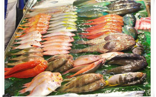 台灣生活史:被誤解的季節魚