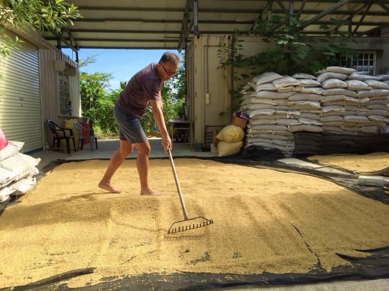 農業博士深居部落  種自己吃的那碗米飯