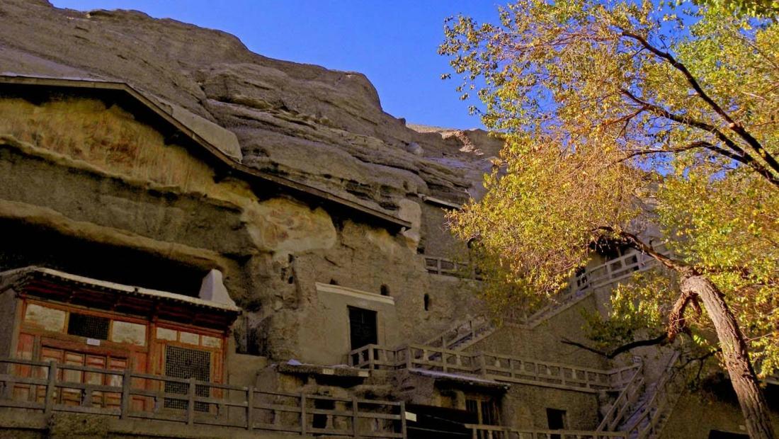 莫高窟胡楊林  探訪生命邊界的一片極樂