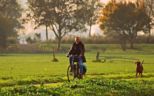 瑞士傳真|如何破解「又老又孤獨」的未來?蘇黎世大學研究:「付出」是關鍵