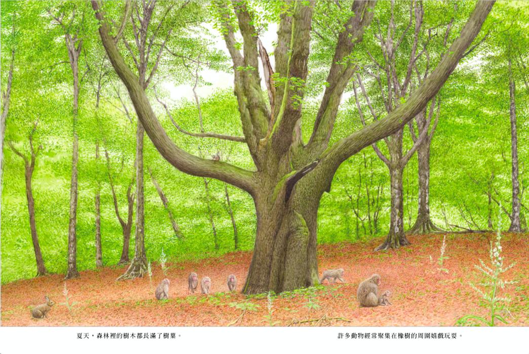 後青春繪本館 熟齡繪本精選20系列一:在無限的時空裡看見生命的美好