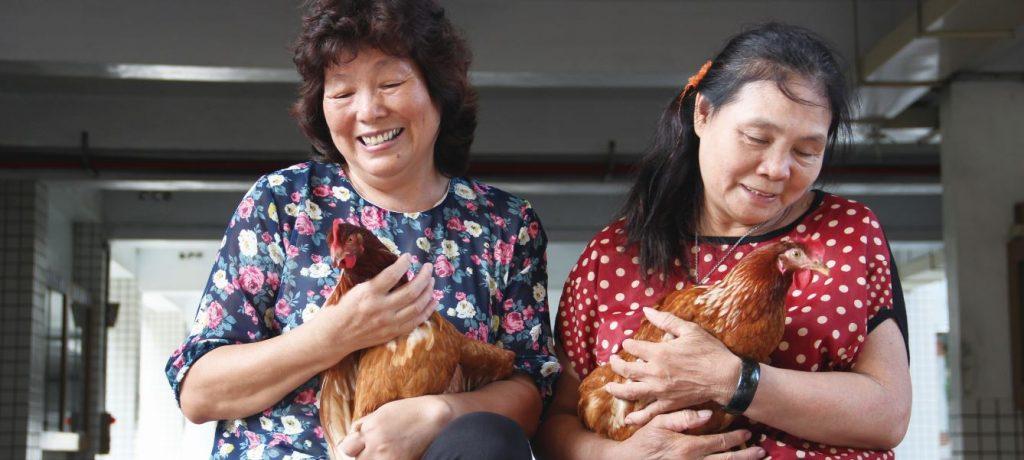 安可人生雜誌第十九期|退休再就業  創意新職種