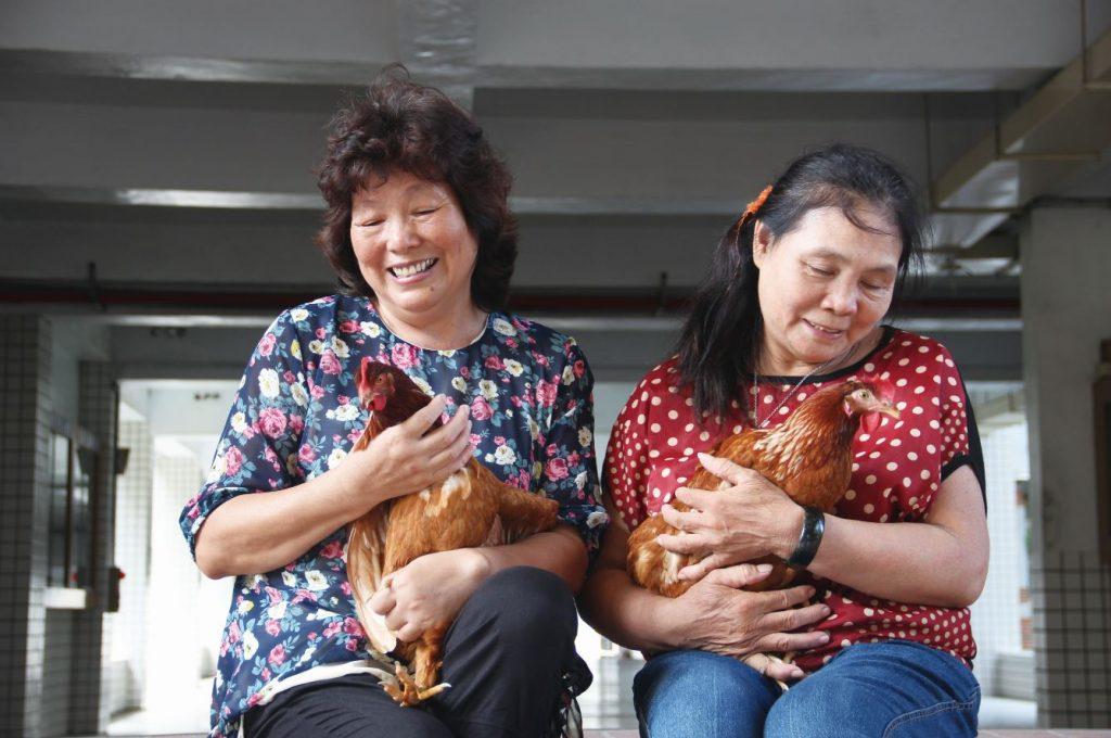 友雞生活-1