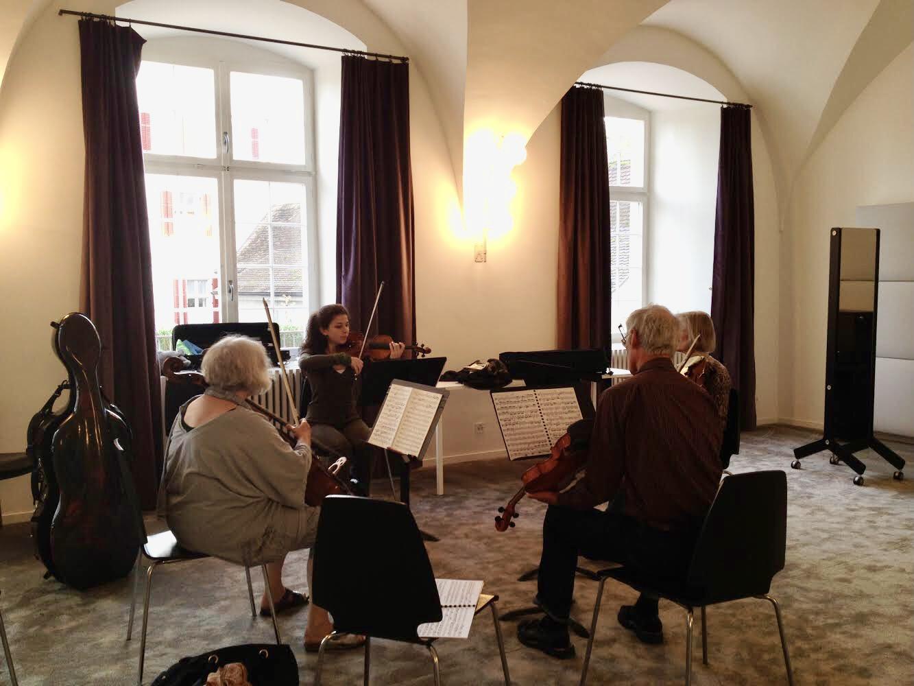 瑞士傳真|萊茵河小島上的音樂秋令營  吸引熟齡音樂愛好者年年朝聖