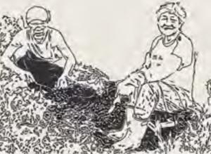 其他新職種-樂農師
