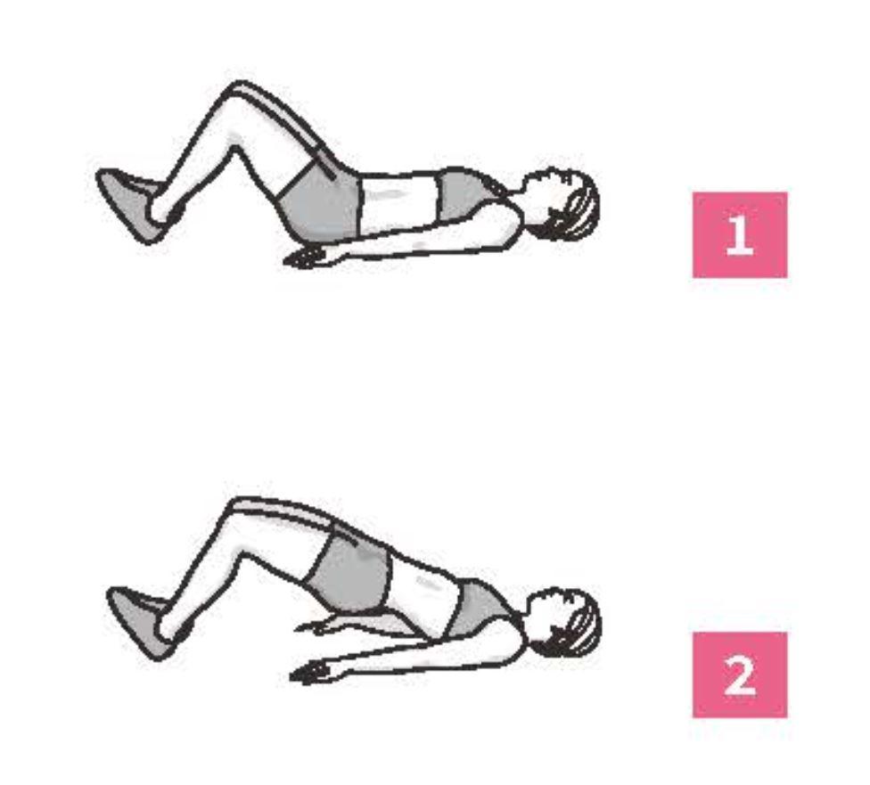 50組在家徒手健身腹腿臀計畫_橋式