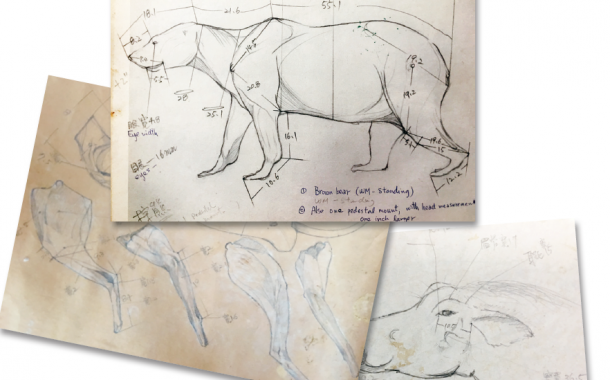 Anke 人物|林文龍——將動物標本提升到藝術層次