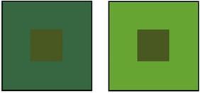 王偉華_色彩專搭示範_綠色方塊-1