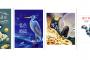 安可小旅行|台61線雲嘉海線公路旅行 那些年,我們一起追逐的鳥日子